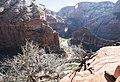 Zion National Park (15351492796).jpg