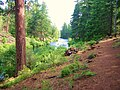 ^08 Woodland Path by Metolius River, Oregon, USA - panoramio.jpg