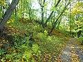 Вінничина, Муровані Курилівці парк Жван 15.jpg