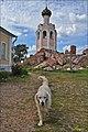 Добродушный местный пёс.jpg