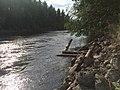 Заводская (протока) 2.jpg