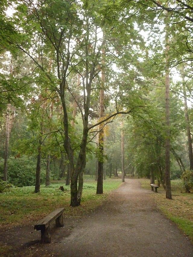Зелёная Роща (парк)