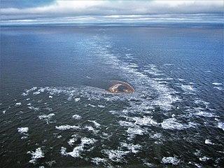 islet in the New Siberian Islands, Laptev Sea