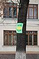 Охоронна табличка «Шкільного дуба» в Чорткові P1190360.jpg
