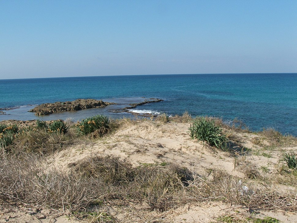חוף ים בישראל (2)
