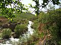 رودخانه کوهرنگ - panoramio (1).jpg