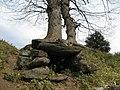 下諏訪 青塚古墳 2007.04.13 - panoramio - alisa 1988 08 (3).jpg