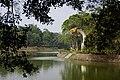 噴水龍 Dragon fountain - panoramio.jpg