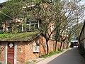 柴房与合欢树 - panoramio.jpg