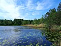 0026. Pargolovo. Finnish lake.jpg