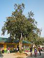 02969jfPandi, Bulacan Roads Schools Landmarksfvf 49.jpg