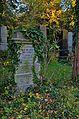 045 - Wien Zentralfriedhof 2015 (22836875517).jpg
