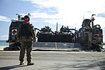 13th MEU's Amphibious Assault 130830-M-BN443-011.jpg