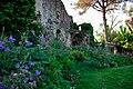 150510 181518 Giardino di Ninfa.jpg