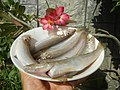 1539Food cuisine of Bulacan 22.jpg