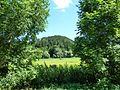 161 Landschaftsschutzgebiet bei Schelklingen.jpg