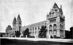 1911 Britannica-Architecture-Natural History Museum.png