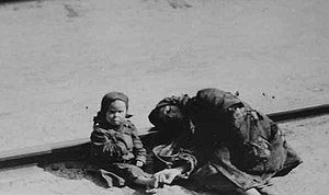 Russian famine of 1921–22 - Victims of the famine, 1922