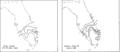 1933Storm5-rainfall-Florida.png
