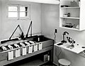 1958. Set up at the Sellwood laboratory for rearing Aphidoletes thompsoni - a European dipterous predator of Chermes. Portland, Oregon. (36571133400).jpg