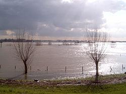 2007-03-08 15.00 Ochten, zicht op de Waal foto2.JPG