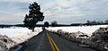 2010 02 17 - 6244 - Beltsville - Beaver Dam Rd (4388438733).jpg