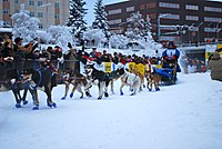 2010 Yukon Quest (4341597750).jpg