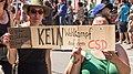 2013 ColognePride - CSD-Parade-2290.jpg