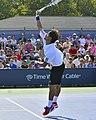 2013 US Open (Tennis) - Fabio Fognini (9665948180).jpg