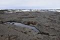 2014-04-28 13-14-48 Iceland Norðurland Eystra - Reykjahlíð.JPG