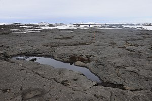 Volcanology of Iceland - Pahoehoe lava fields in Iceland