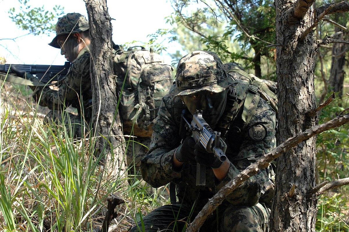 Republic Of Korea Army Special Warfare Command Wikipedia