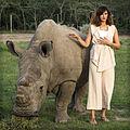 El rinoceronte blanco del norte Sudán, junto a Nargis Fakhri