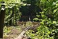 20200423Alt-Saarbrücker Stadtwald 01.jpg