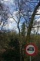 25.3.16 Delamere Forest 12 (26008322436).jpg