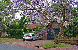Killara - Residential home, Springdale Road, Killara
