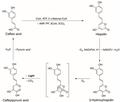 3-Hydroxy-Hispidin-Luciferin.png