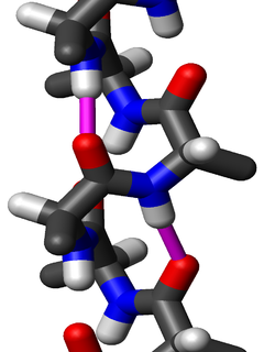 3<sub>10</sub> helix Type of secondary structure