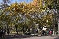 51-101-0557 Odesa DSC 0271.jpg