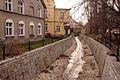 8248viki Bielawa. Foto Barbara Maliszewska.jpg