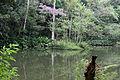 Açude Solidão na Floresta da Tijuca I.jpg