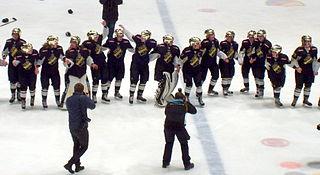 Womens ice hockey in Sweden