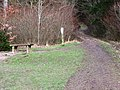 A Place to Sit and Rest in Wendover Woods - geograph.org.uk - 1213283.jpg