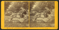 A Rock Garden Seat. Michigan Cottage Grounds, from Robert N. Dennis collection of stereoscopic views.png