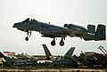 """A US Air Force (USAF) A-10 Thunderbolt lands near the """"bone-yard"""", at Bagram Air Base (AB), Afghanistan, after flying a mission in support of Operation ENDURING FREEDOM - DPLA - 20c84368919083bf0a91b633a0effad3.jpeg"""