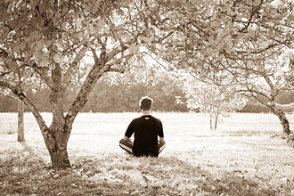 Yoga Yajnavalkya - Solitary and quiet locations are recommended for Yoga by the text in chapter 5.