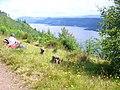 Above Loch Ness - geograph.org.uk - 890335.jpg