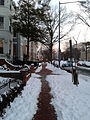After the snow, Capitol Hill, Washington, DC, February 17th, 2015 - 3.jpeg