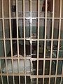 Alcatraz Cells 7.JPG