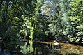 Aldeias e Margens do Rio Ovelha VIII (35786323963).jpg